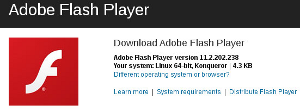 Install Flash.png