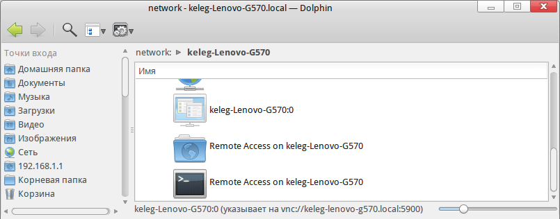 Dolphin-remote-access.png